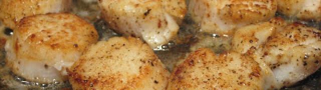 Diver Scallops Provençal